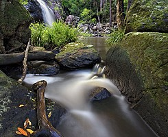 Gheerulla Creek Falls 3