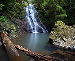 Araucaria Falls 1